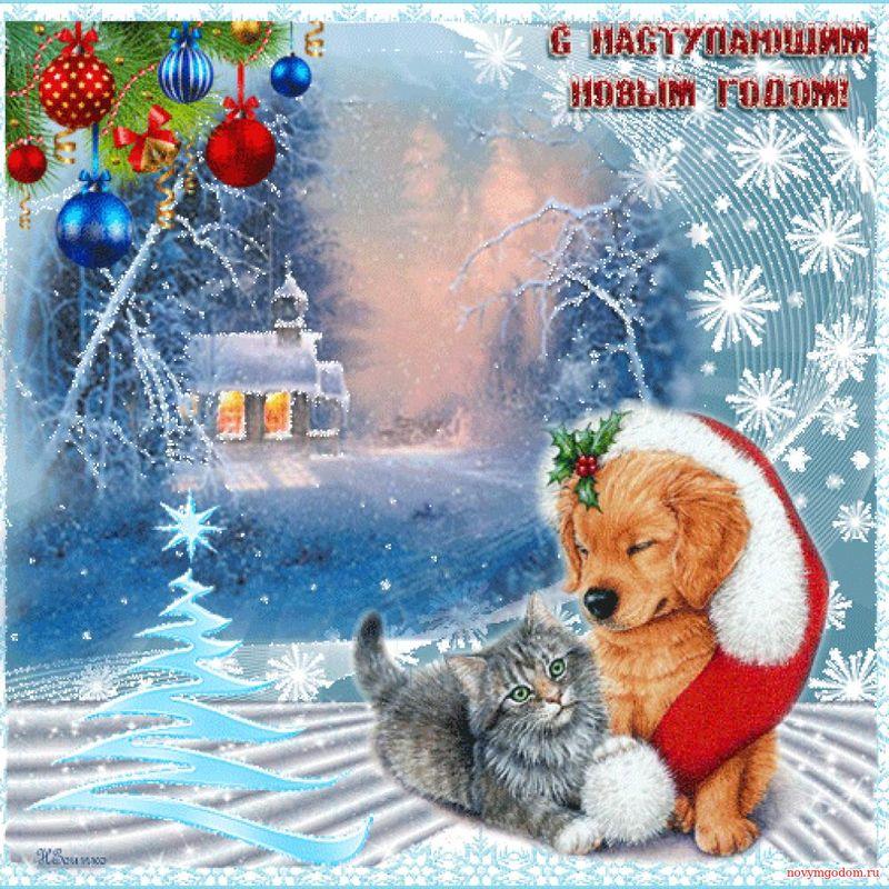 Картинки с наступающим Новым годом собаки 2018