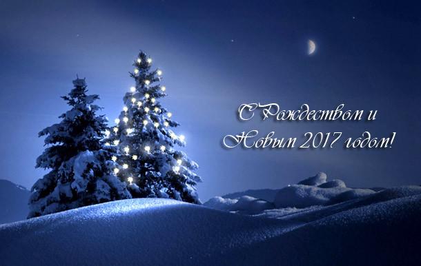 С новым Годом 2017 и Рождеством!