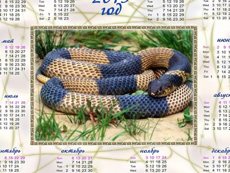 Обои 2013 год змеи календарь