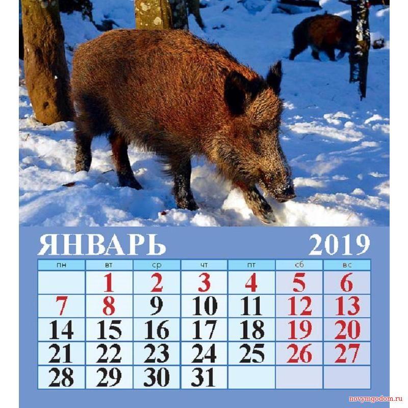 Календарь на январь 2015 год Козы. Новогодний календарь 2017