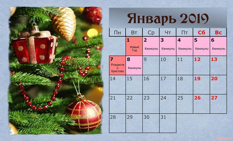 Календарь на январь 2019 год по месяцам картинки