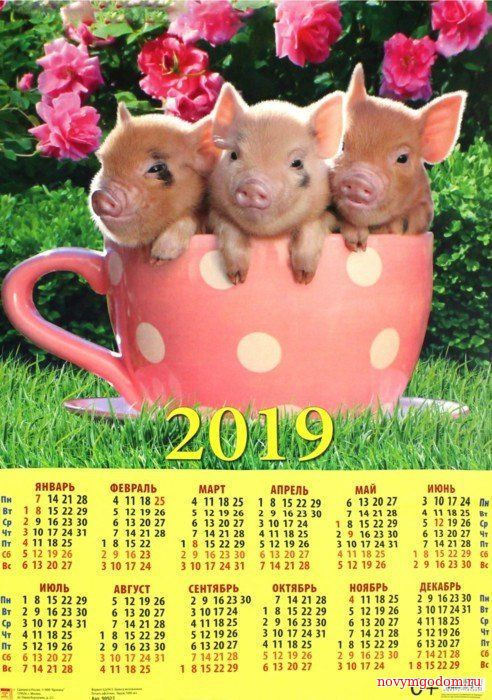 Календарь на 2017 год. Новогодний календарь 2017