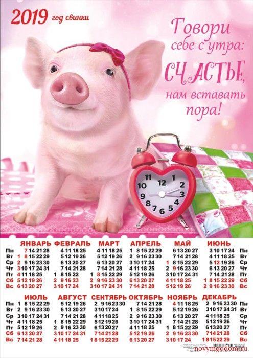 Календарик 2019 со свиньей