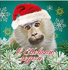 Аватар с обезьяной в колпаке. Картинки с символом 2017 года