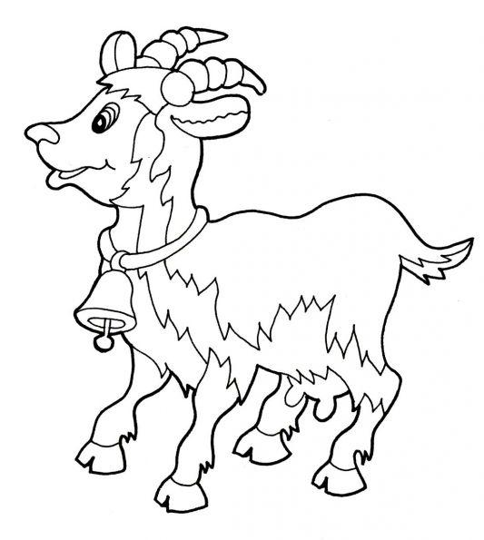 Раскраска Коза. Картинки с символом 2017 года