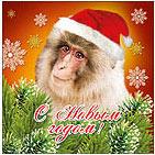 Аватар с обезьяной на Новый год. Картинки с символом 2017 года