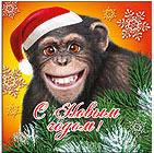 Новогодний аватар обезьяна. Картинки с символом 2017 года