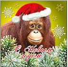 Новогодний аватар с обезьяной. Картинки с символом 2018 года