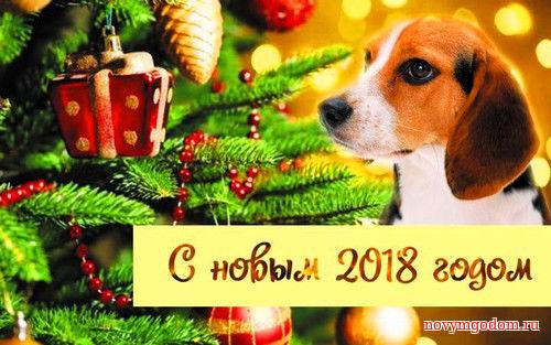 2017 год картинки. С Новым годом собаки 2018