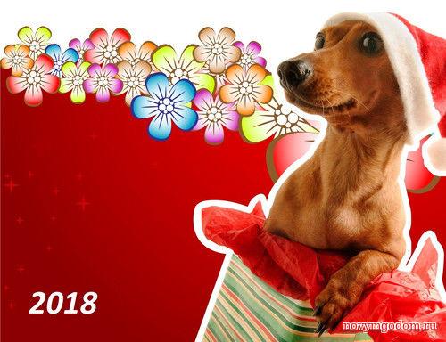 Привет 2018 год. С Новым годом собаки 2018