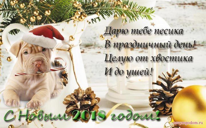 Дарю тебе пёсика на Новы год 2018