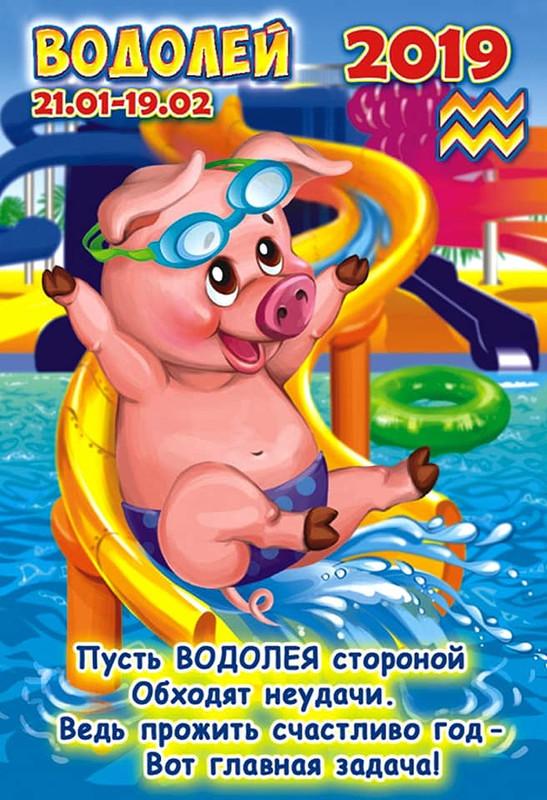 Водолей - Гороскоп на 2019 год Свиньи (Кабана)