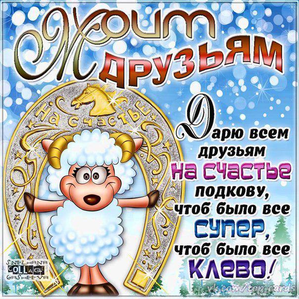 Моим друзьям на Новый год. С Новым Годом козы овцы