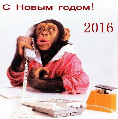 Картинки с новым годом 2016 год обезьяны